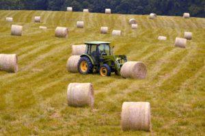 покупка земли сельхоз назначения